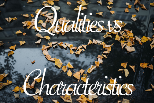 Qualities of Relationship vs. Characteristics of Partners