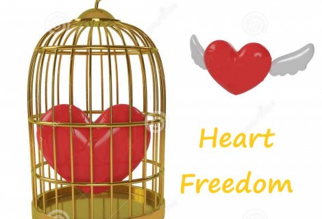 Heart Freedom Feels Everything